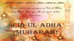 Eid-3